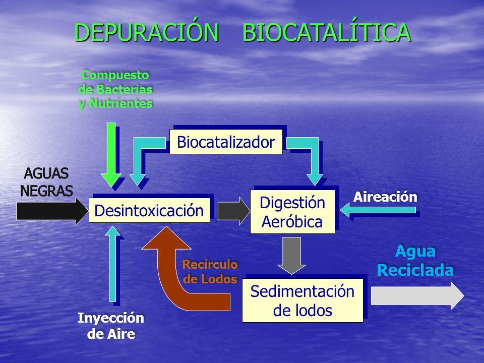 MEXICALI B.C. (Thomson Displays): Equaldetox ®