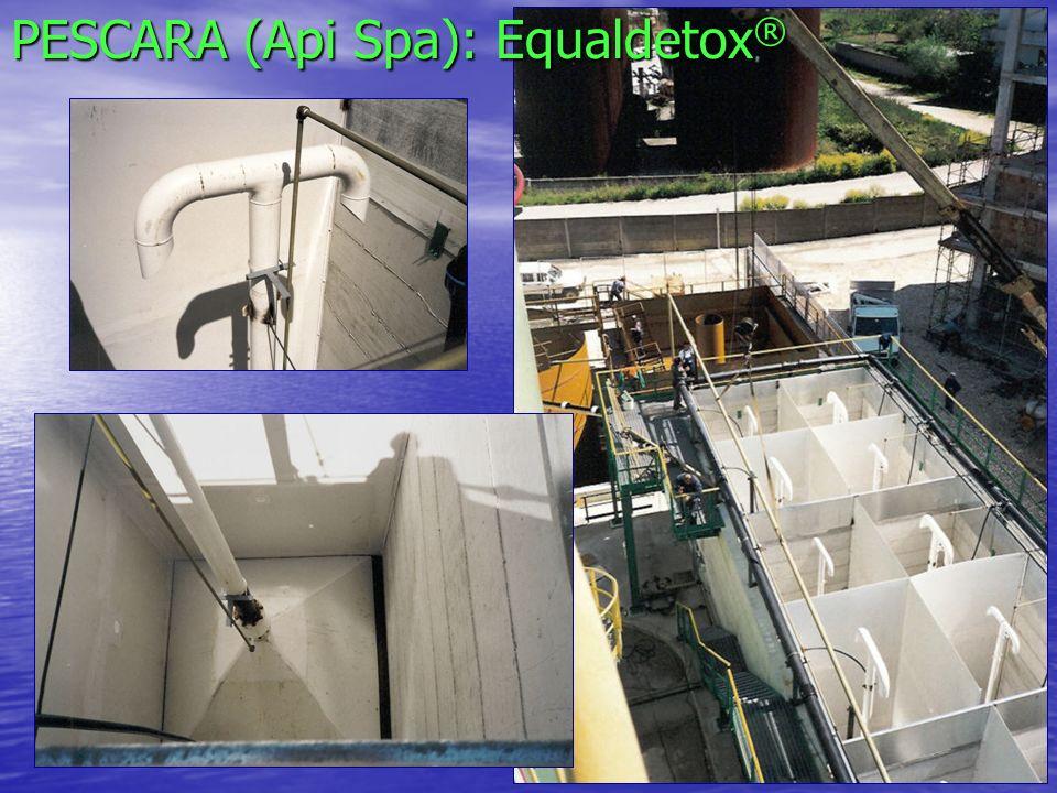 GAETA (ENI Spa) Biocolumnas (foto y quimiosinteticas) para la produción del Biocatalizador ® Biocolumnas Equaldetox ®