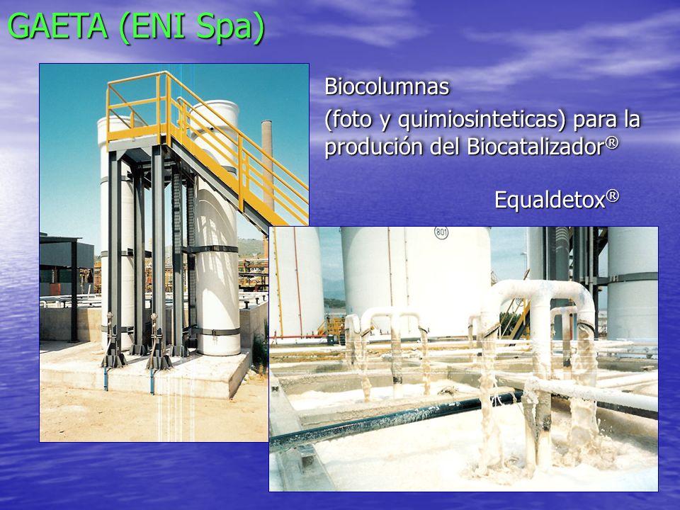 PESCARA (API Spa):Biocavitador y Sedimentador
