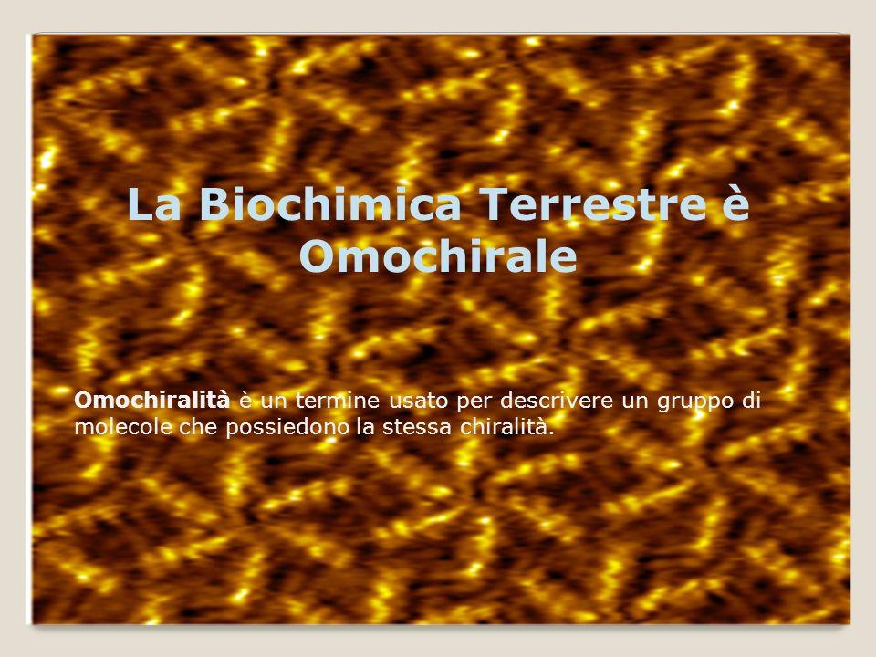 La Biochimica Terrestre è Omochirale Omochiralità è un termine usato per descrivere un gruppo di molecole che possiedono la stessa chiralità.