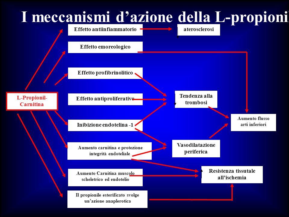 I meccanismi dazione della L-propionil-Carnitina nellarteriopatia periferica L-Propionil- Carnitina Effetto antiinfiammatorio Effetto emoreologico Eff
