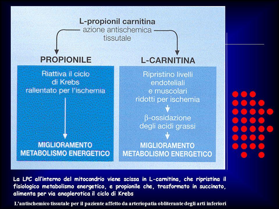 Lantischemico tissutale per il paziente affetto da arteriopatia obliterante degli arti inferiori La LPC allinterno del mitocondrio viene scissa in L-c