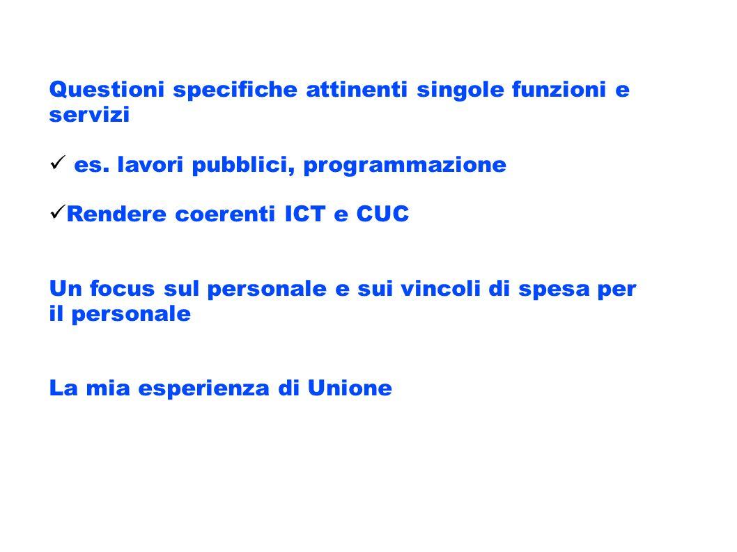 Questioni specifiche attinenti singole funzioni e servizi es. lavori pubblici, programmazione Rendere coerenti ICT e CUC Un focus sul personale e sui