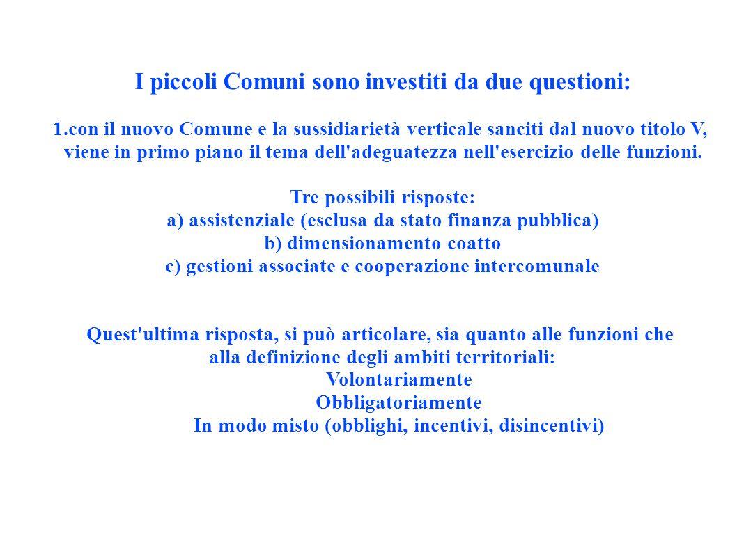 Gli ambiti ottimali (torna l araba fenice) Art.19, comma 1, lett.