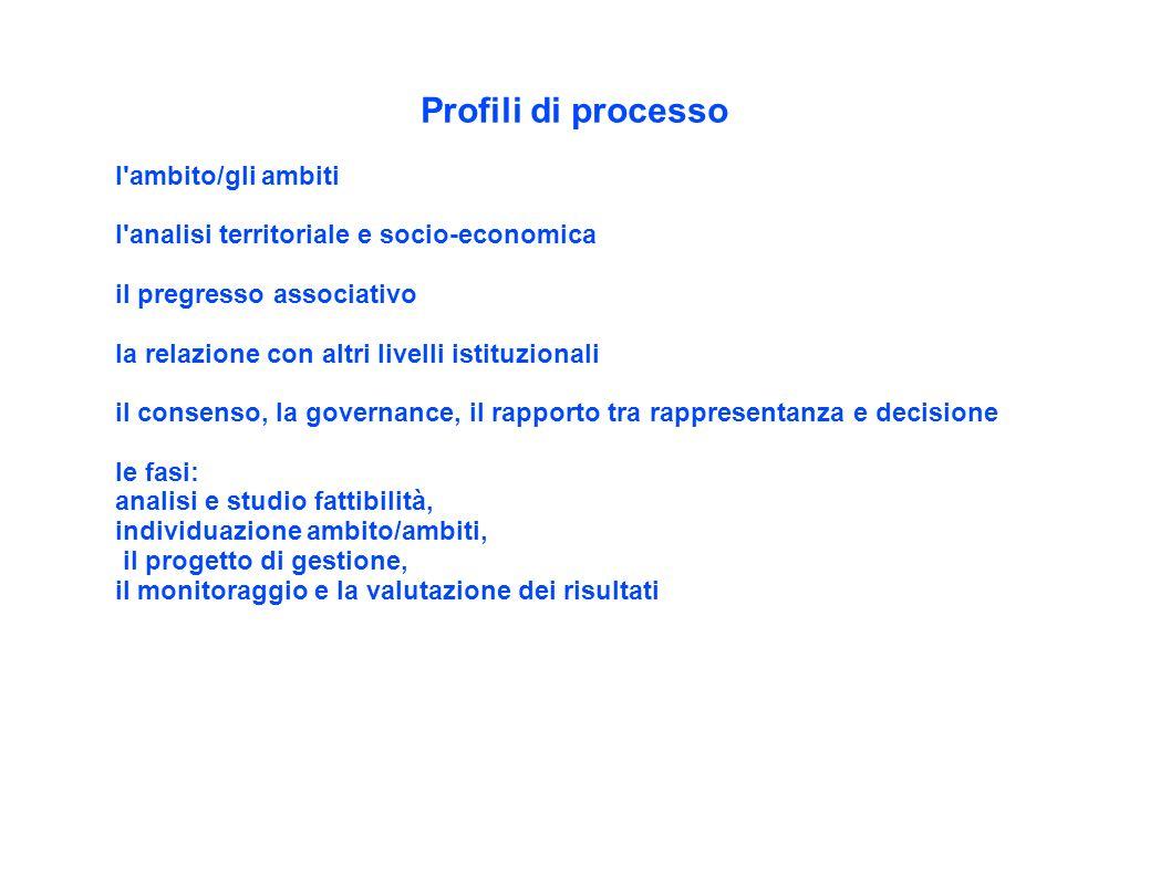 Profili di processo l'ambito/gli ambiti l'analisi territoriale e socio-economica il pregresso associativo la relazione con altri livelli istituzionali