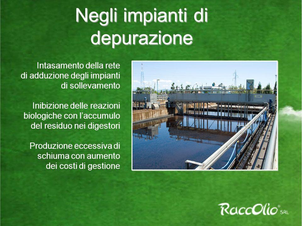 Negli impianti di depurazione Intasamento della rete di adduzione degli impianti di sollevamento Inibizione delle reazioni biologiche con laccumulo del residuo nei digestori Produzione eccessiva di schiuma con aumento dei costi di gestione