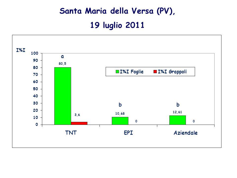Santa Maria della Versa (PV), 19 luglio 2011