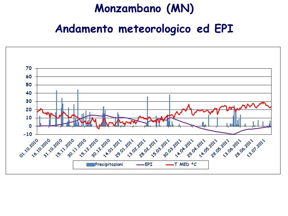 Monzambano (MN) Andamento meteorologico ed EPI