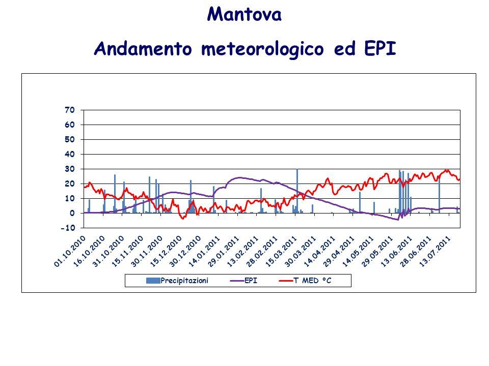Mantova Andamento meteorologico ed EPI