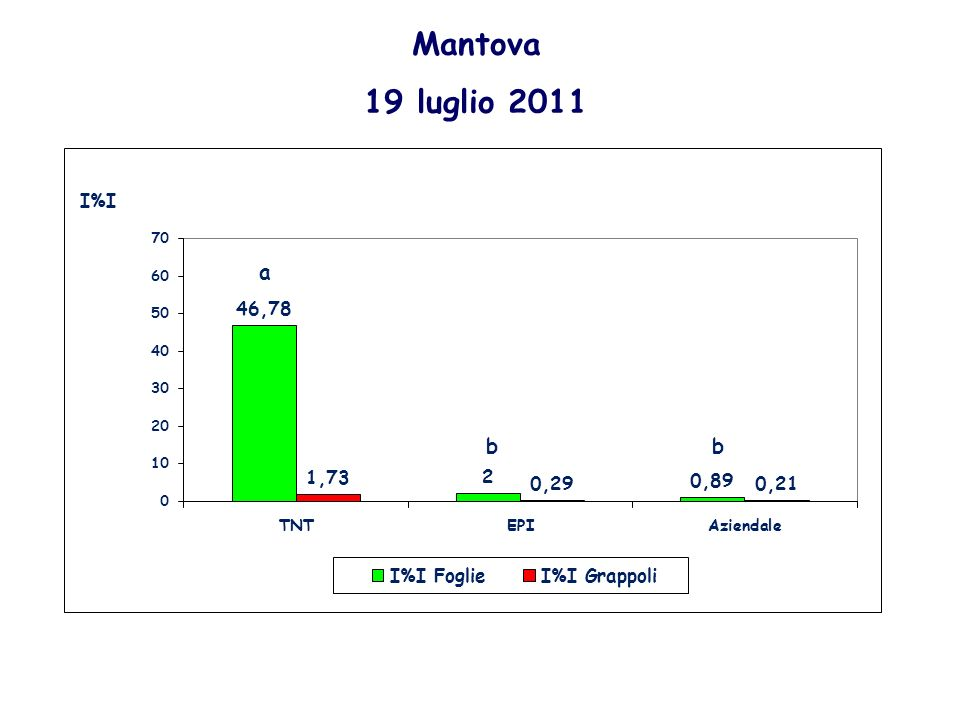Mantova 19 luglio 2011 a bb