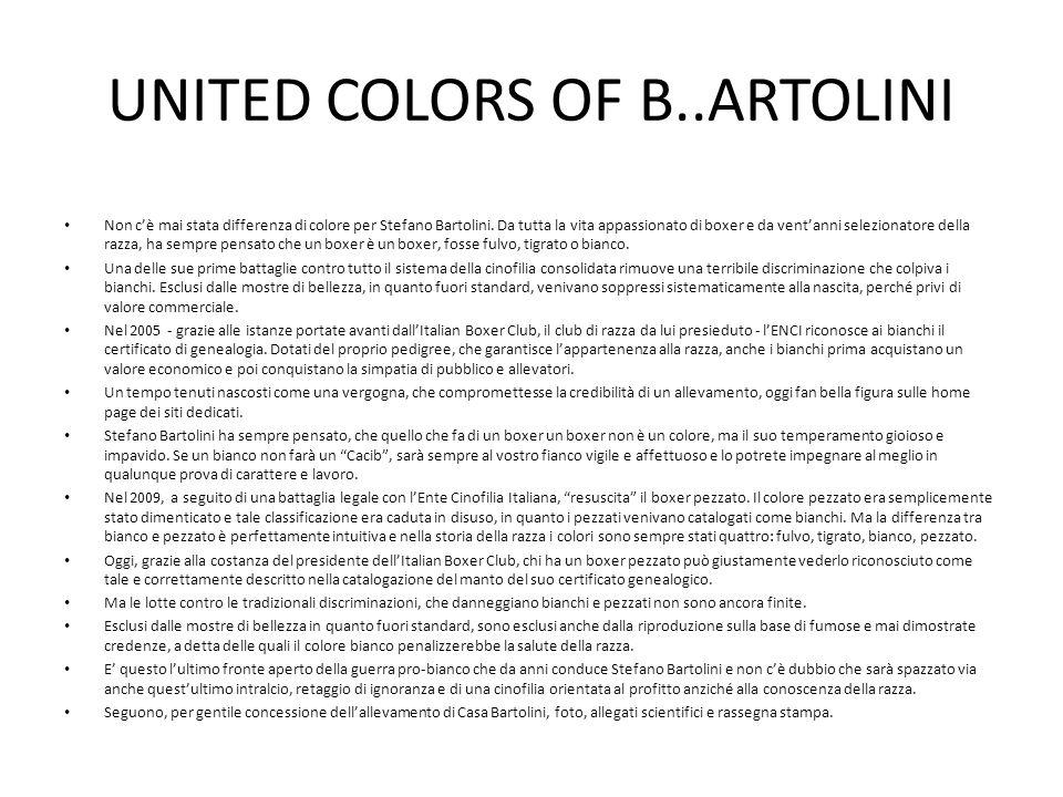 UNITED COLORS OF B..ARTOLINI Non cè mai stata differenza di colore per Stefano Bartolini. Da tutta la vita appassionato di boxer e da ventanni selezio