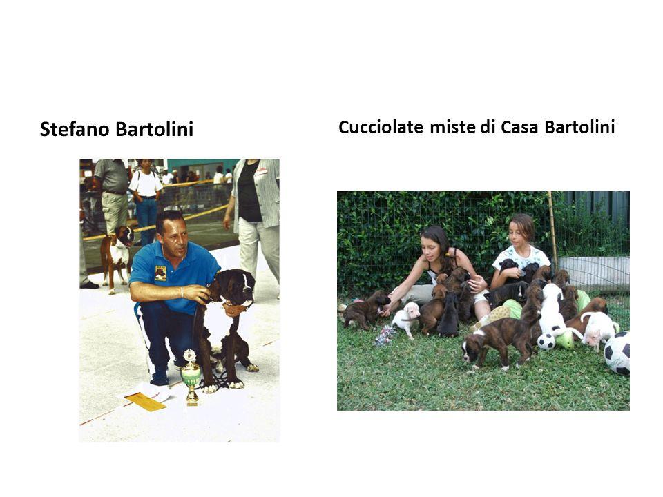 Stefano Bartolini Cucciolate miste di Casa Bartolini