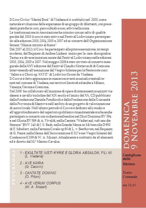 Il Coro Civico Marini Boni di Viadana si è costituito nel 2003, come naturale evoluzione delle esperienze di un gruppo di dilettanti, con prece- denti