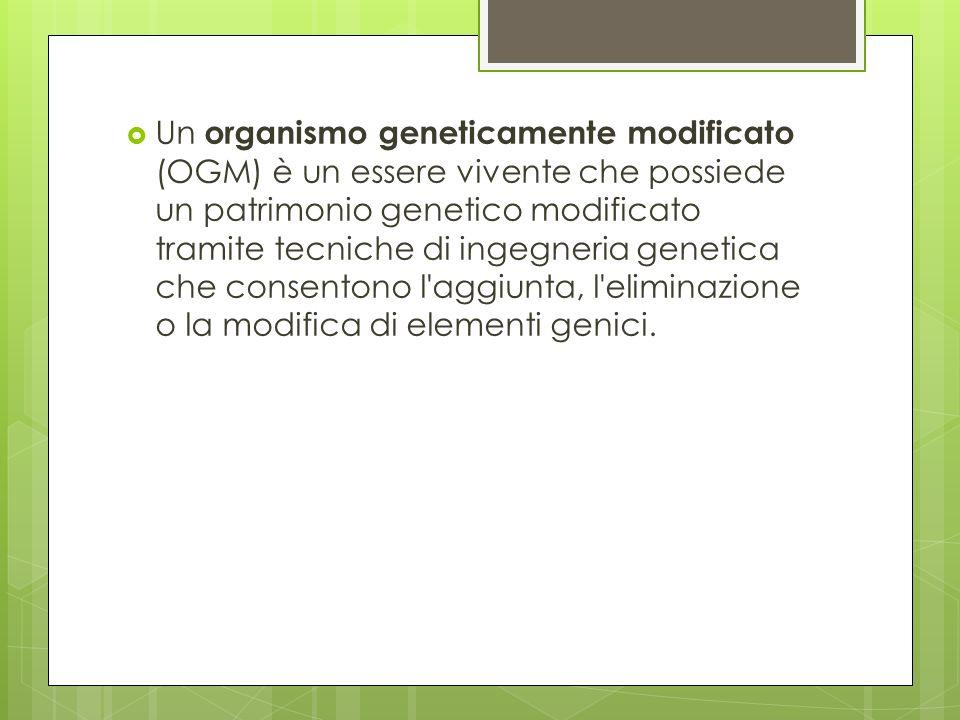 Un organismo geneticamente modificato (OGM) è un essere vivente che possiede un patrimonio genetico modificato tramite tecniche di ingegneria genetica