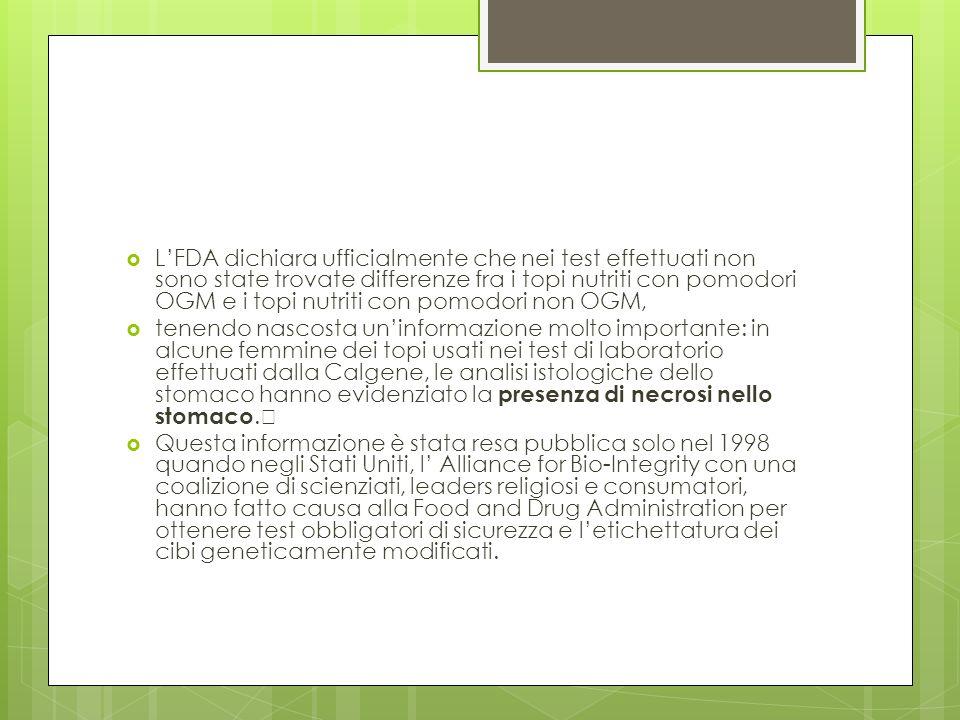 LFDA dichiara ufficialmente che nei test effettuati non sono state trovate differenze fra i topi nutriti con pomodori OGM e i topi nutriti con pomodor