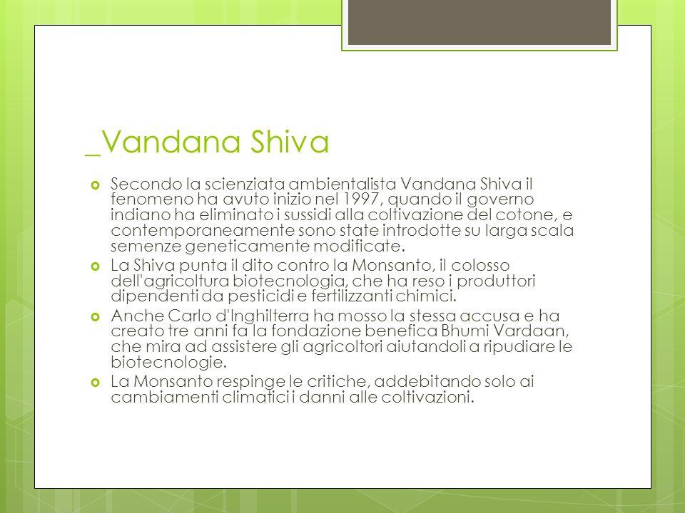 _Vandana Shiva Secondo la scienziata ambientalista Vandana Shiva il fenomeno ha avuto inizio nel 1997, quando il governo indiano ha eliminato i sussid