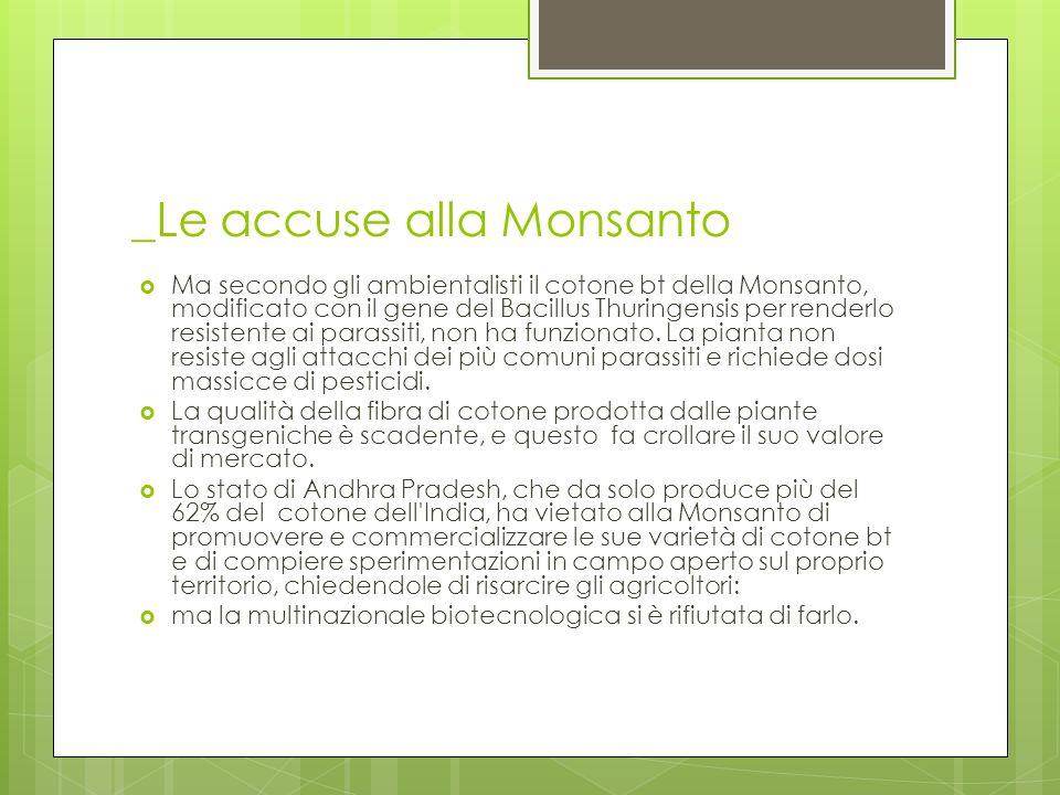_Le accuse alla Monsanto Ma secondo gli ambientalisti il cotone bt della Monsanto, modificato con il gene del Bacillus Thuringensis per renderlo resis