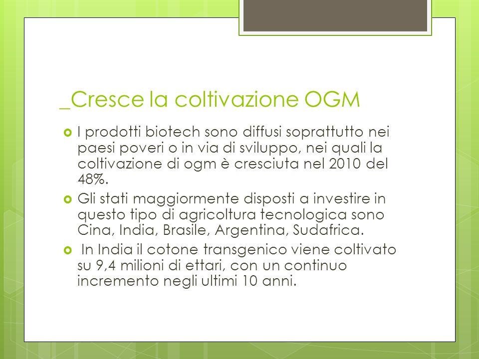 _Cresce la coltivazione OGM I prodotti biotech sono diffusi soprattutto nei paesi poveri o in via di sviluppo, nei quali la coltivazione di ogm è cres