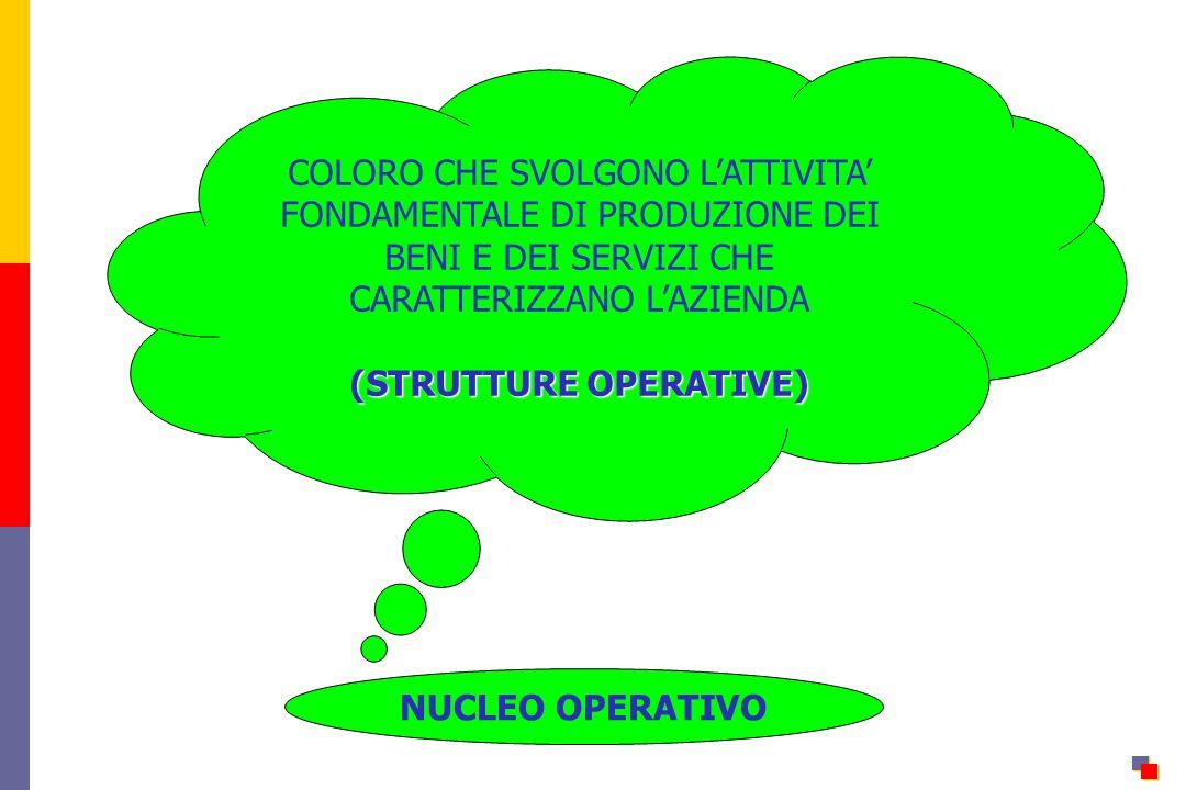 NUCLEO OPERATIVO COLORO CHE SVOLGONO LATTIVITA FONDAMENTALE DI PRODUZIONE DEI BENI E DEI SERVIZI CHE CARATTERIZZANO LAZIENDA (STRUTTURE OPERATIVE)
