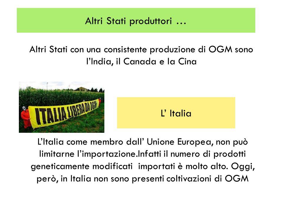 Altri Stati produttori … Altri Stati con una consistente produzione di OGM sono lIndia, il Canada e la Cina L Italia LItalia come membro dall Unione E