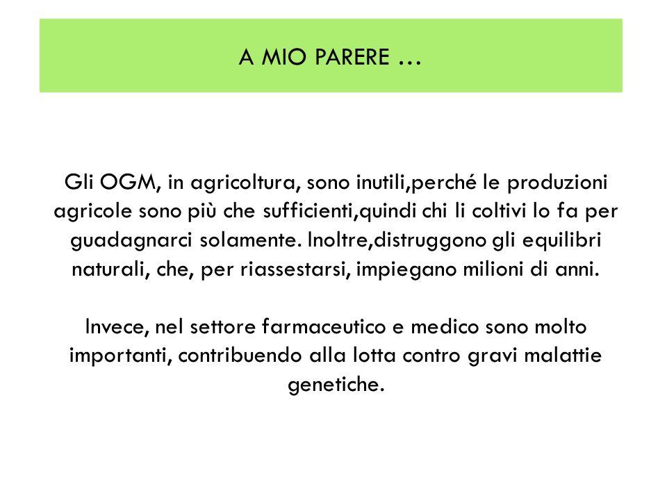 Gli OGM, in agricoltura, sono inutili,perché le produzioni agricole sono più che sufficienti,quindi chi li coltivi lo fa per guadagnarci solamente. In