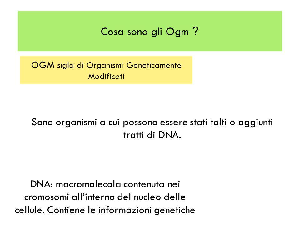 Cosa sono gli Ogm ? OGM sigla di Organismi Geneticamente Modificati Sono organismi a cui possono essere stati tolti o aggiunti tratti di DNA. DNA: mac