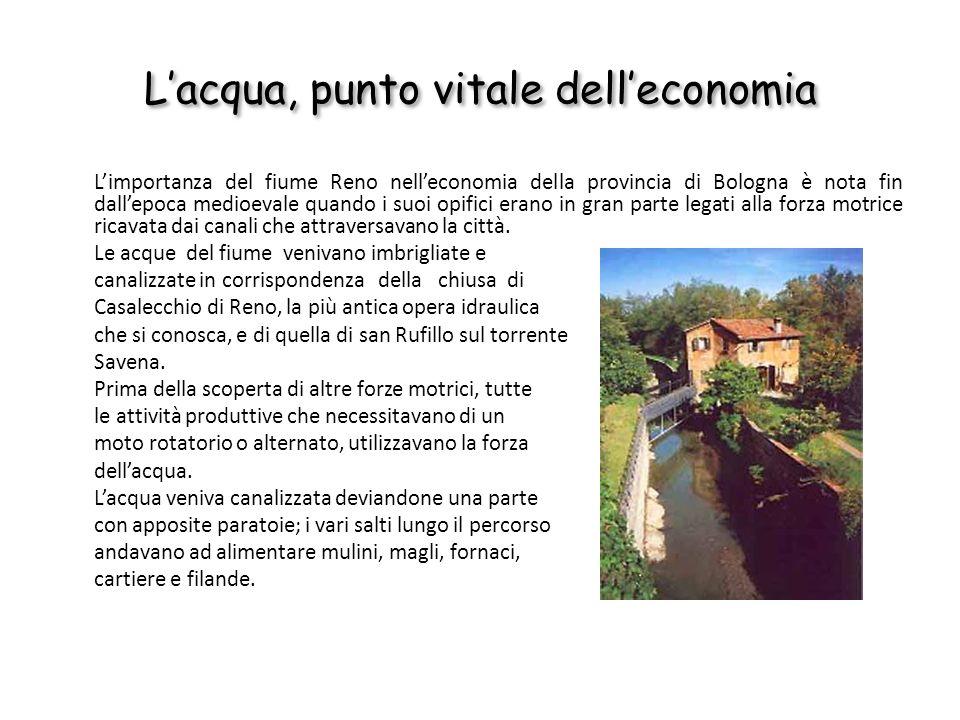 Lacqua, punto vitale delleconomia Limportanza del fiume Reno nelleconomia della provincia di Bologna è nota fin dallepoca medioevale quando i suoi opi