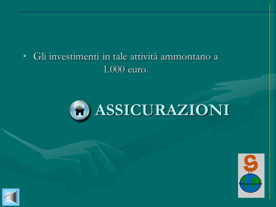 Gli investimenti in tale attività ammontano a 1.000 euro.Gli investimenti in tale attività ammontano a 1.000 euro. ASSICURAZIONI