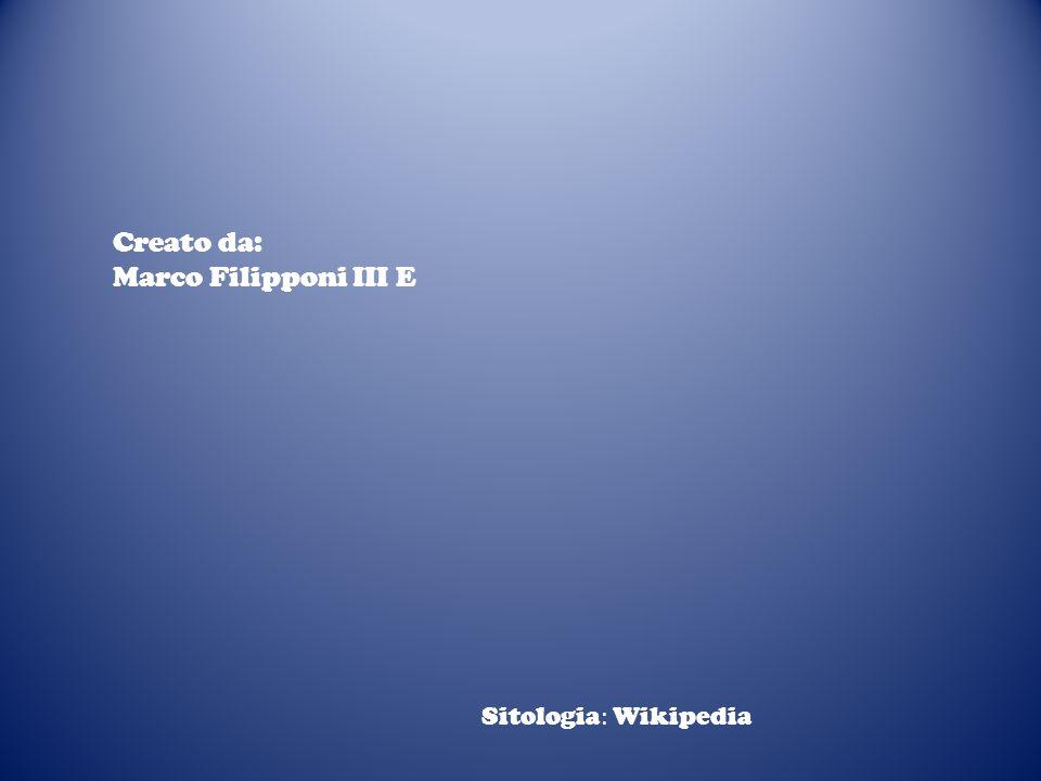 Creato da: Marco Filipponi III E Sitologia : Wikipedia