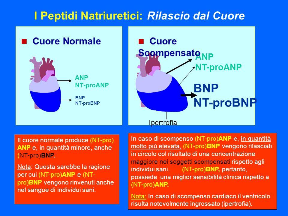 Il cuore normale produce (NT-pro) ANP e, in quantità minore, anche (NT-pro)BNP. Nota: Questa sarebbe la ragione per cui (NT-pro)ANP e (NT- pro)BNP ven