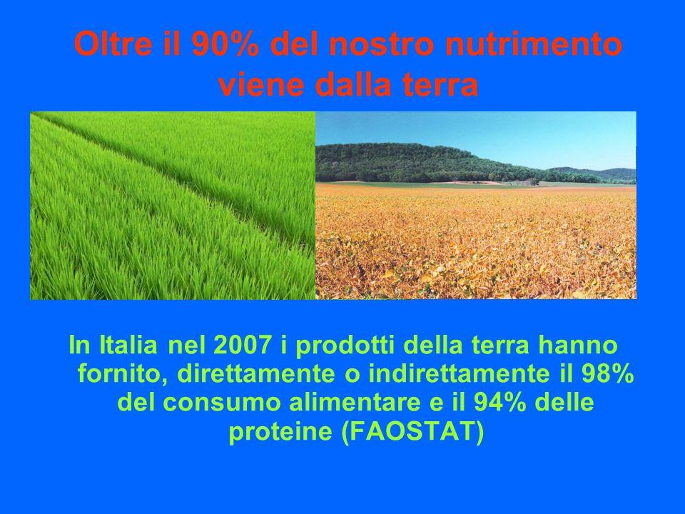 Oltre il 90% del nostro nutrimento viene dalla terra In Italia nel 2007 i prodotti della terra hanno fornito, direttamente o indirettamente il 98% del consumo alimentare e il 94% delle proteine (FAOSTAT)