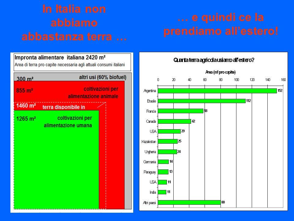 In Italia non abbiamo abbastanza terra … … e quindi ce la prendiamo allestero!