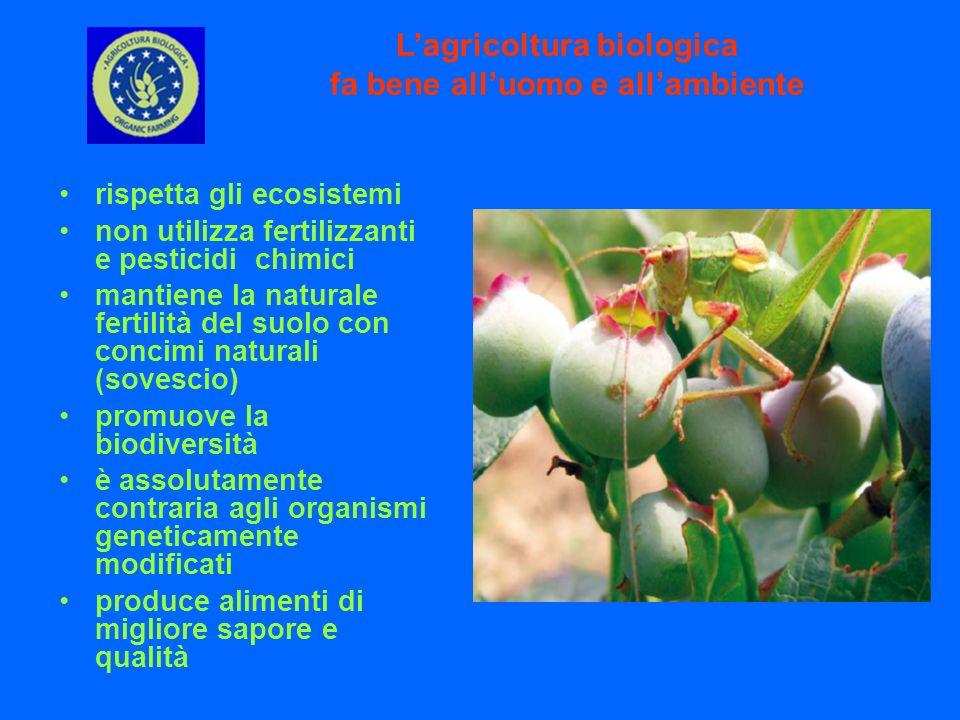 rispetta gli ecosistemi non utilizza fertilizzanti e pesticidi chimici mantiene la naturale fertilità del suolo con concimi naturali (sovescio) promuo