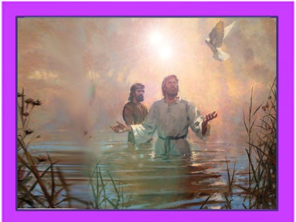 Queste trasmissioni, tali rivelazioni aggiornate, allattuale livello di comprensione delle masse, indicano a chiunque lo voglia veramente, il Ritorno al Padre.