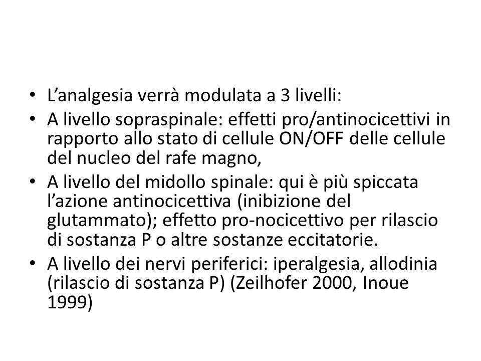 Lanalgesia verrà modulata a 3 livelli: A livello sopraspinale: effetti pro/antinocicettivi in rapporto allo stato di cellule ON/OFF delle cellule del