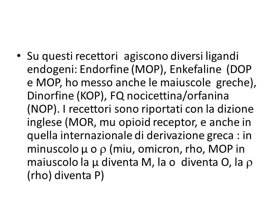 Su questi recettori agiscono diversi ligandi endogeni: Endorfine (MOP), Enkefaline (DOP e MOP, ho messo anche le maiuscole greche), Dinorfine (KOP), F