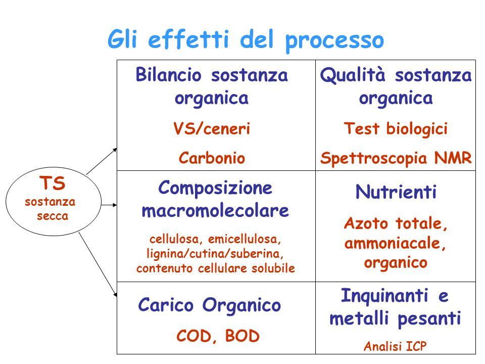 Bilancio sostanza organica VS/ceneri Carbonio Gli effetti del processo Composizione macromolecolare cellulosa, emicellulosa, lignina/cutina/suberina,