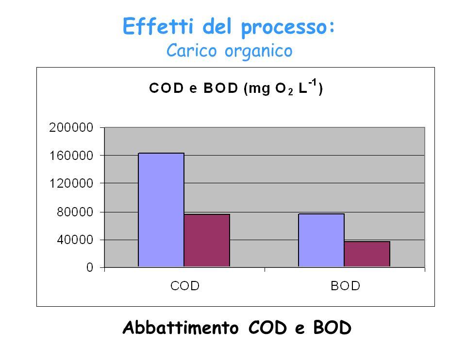 Abbattimento COD e BOD Effetti del processo: Carico organico
