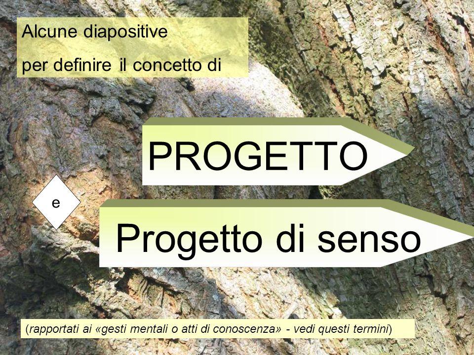 Alcune diapositive per definire il concetto di PROGETTO (rapportati ai «gesti mentali o atti di conoscenza» - vedi questi termini) Progetto di senso e