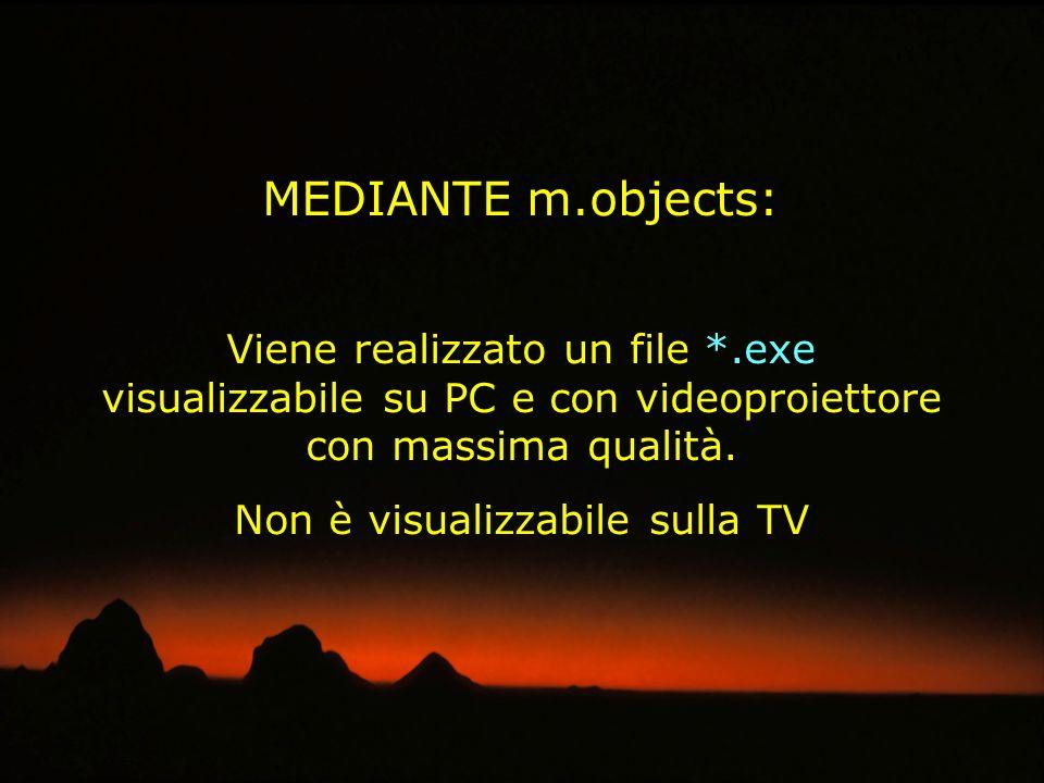 VIDEOPROIETTORE PRESENTAZIONE DELLAUDIOVISIVO CON VIDEOPROIETTORE File ESEGUIBILE (*.exe): - Contiene immagini, musica e dissolvenza - File di piccole dimensioni - Estrema fedeltà dellimmagine - Risoluzione nativa - Non vi è compressione - Non entra nel sistema - Masterizzabile su CD - Non è manipolabile