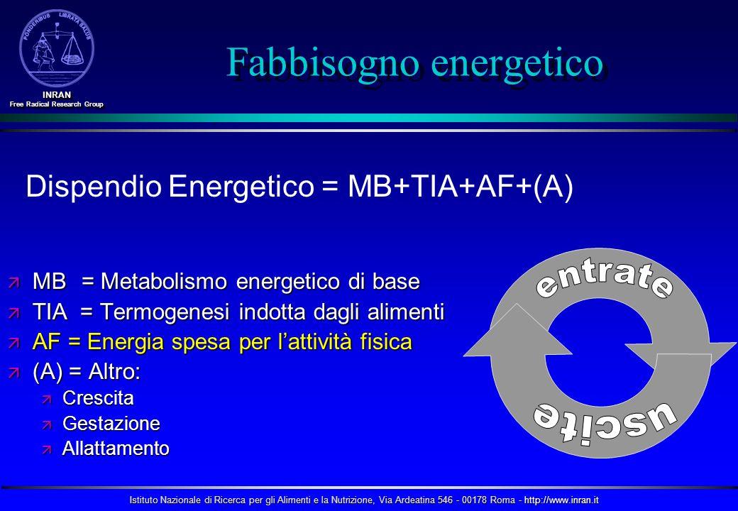 Istituto Nazionale di Ricerca per gli Alimenti e la Nutrizione, Via Ardeatina 546 - 00178 Roma - http://www.inran.it INRAN Free Radical Research Group INRAN Fabbisogno energetico MB = Metabolismo energetico di base MB = Metabolismo energetico di base TIA = Termogenesi indotta dagli alimenti TIA = Termogenesi indotta dagli alimenti AF = Energia spesa per lattività fisica AF = Energia spesa per lattività fisica (A) = Altro: (A) = Altro: Crescita Crescita Gestazione Gestazione Allattamento Allattamento Dispendio Energetico = MB+TIA+AF+(A)