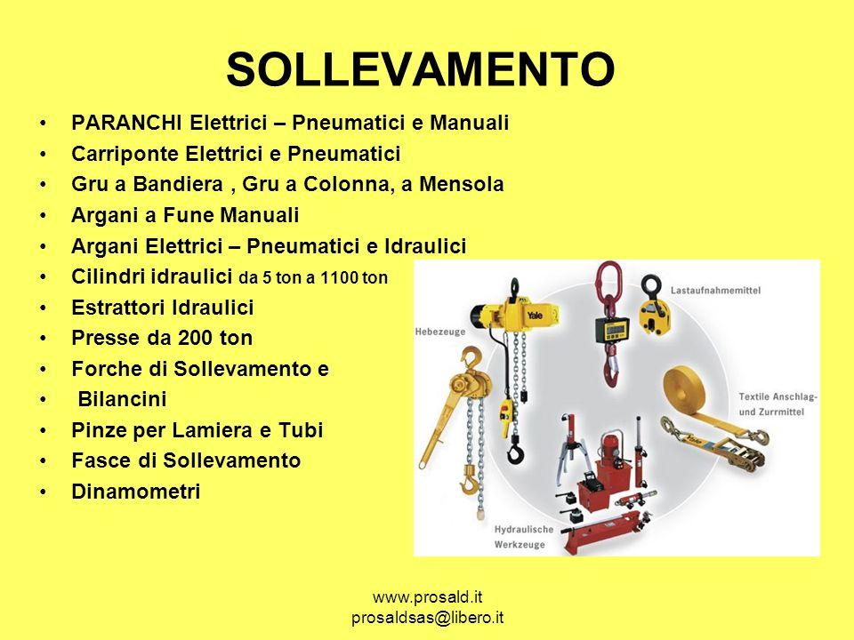 www.prosald.it prosaldsas@libero.it SOLLEVAMENTO PARANCHI Elettrici – Pneumatici e Manuali Carriponte Elettrici e Pneumatici Gru a Bandiera, Gru a Col