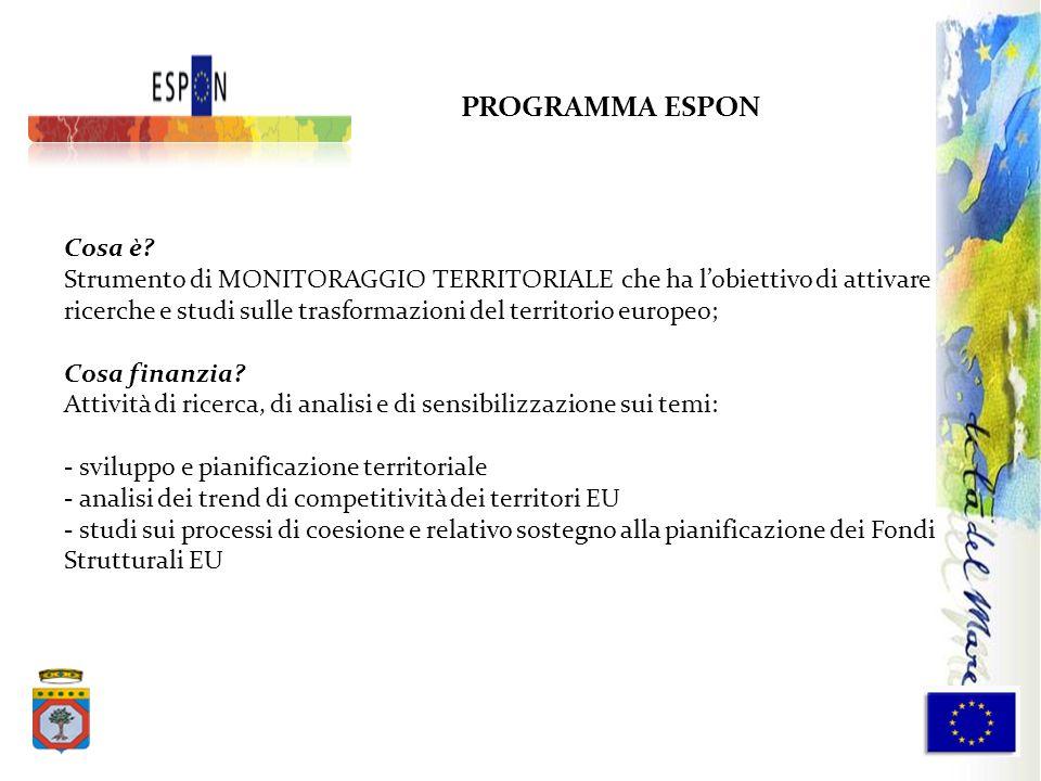 PROGRAMMA ESPON Cosa è? Strumento di MONITORAGGIO TERRITORIALE che ha lobiettivo di attivare ricerche e studi sulle trasformazioni del territorio euro