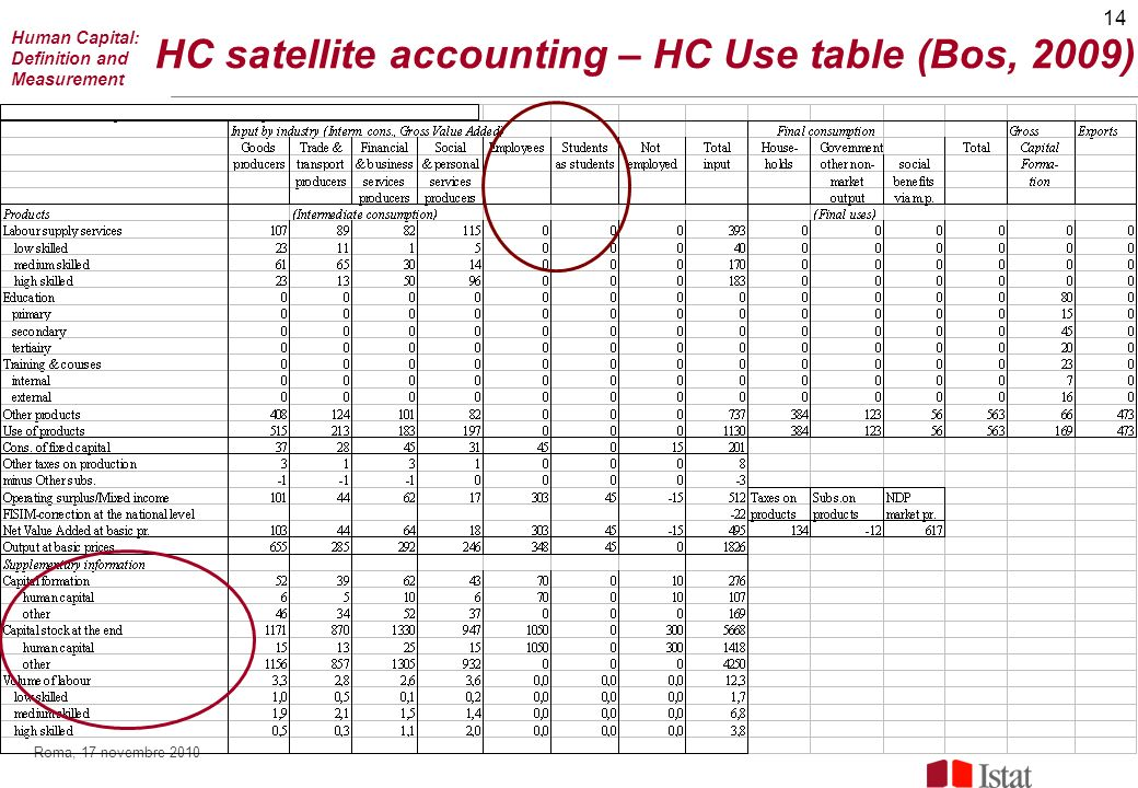 14 Roma, 17 novembre 2010 HC satellite accounting – HC Use table (Bos, 2009) Human Capital: Definition and Measurement