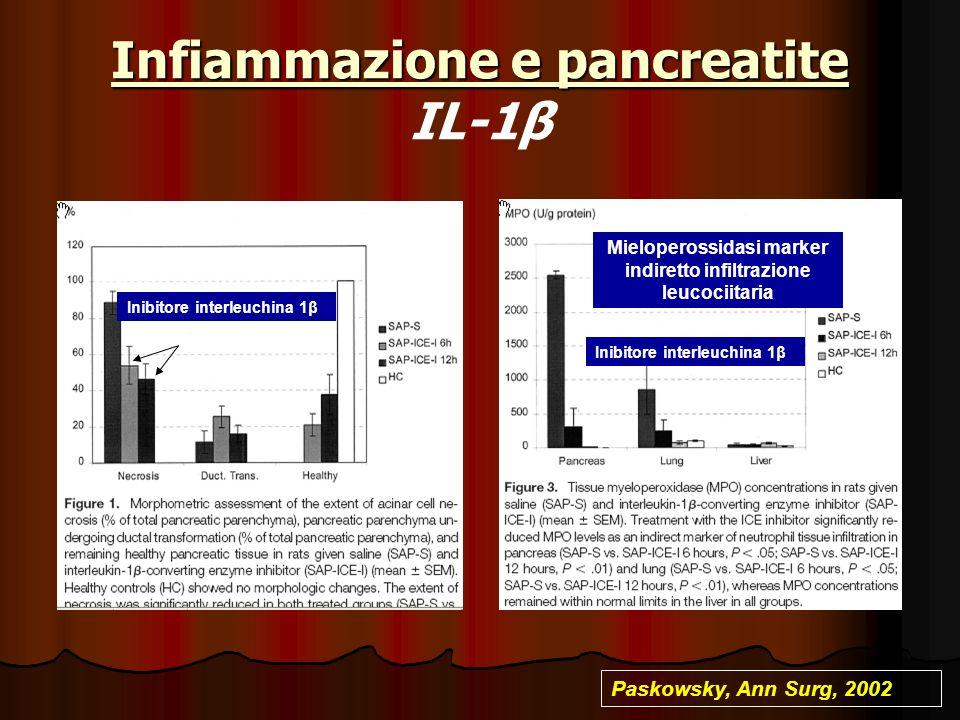 Infiammazione e pancreatite Infiammazione e pancreatite IL-1β Inibitore interleuchina 1β Mieloperossidasi marker indiretto infiltrazione leucociitaria