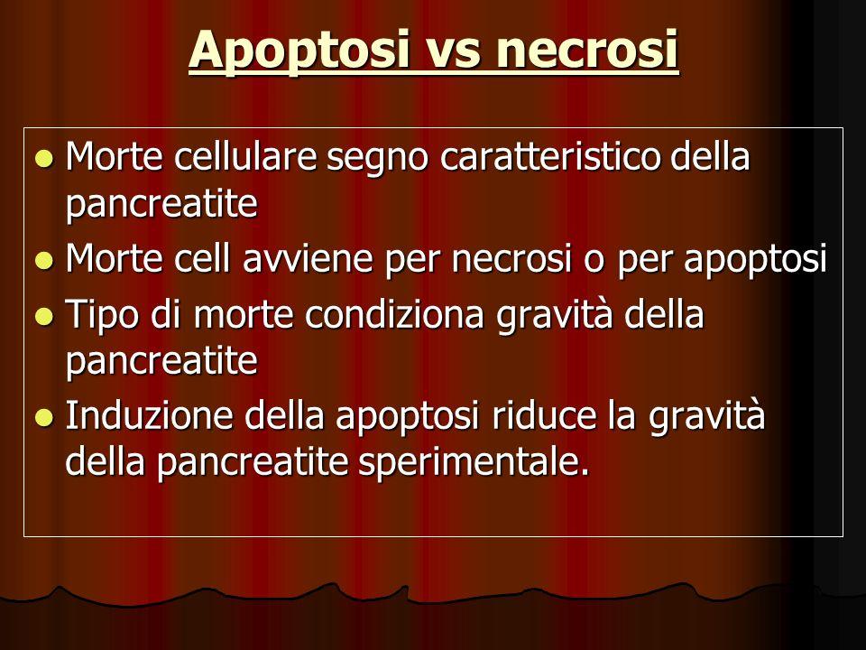 Apoptosi vs necrosi Morte cellulare segno caratteristico della pancreatite Morte cellulare segno caratteristico della pancreatite Morte cell avviene p