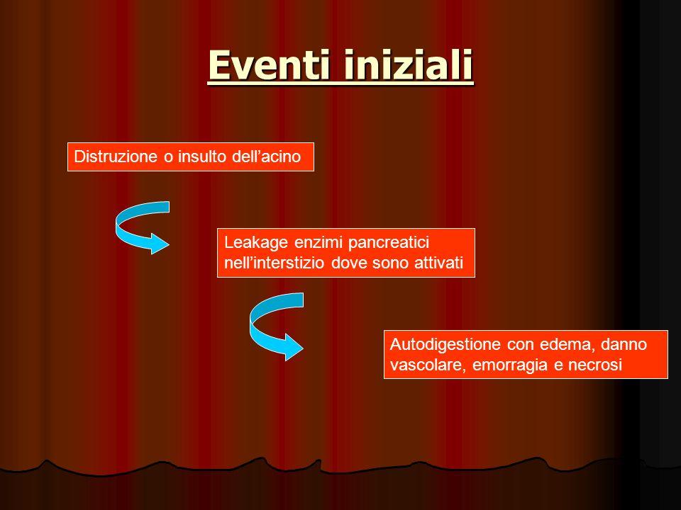 Eventi iniziali Distruzione o insulto dellacino Leakage enzimi pancreatici nellinterstizio dove sono attivati Autodigestione con edema, danno vascolar