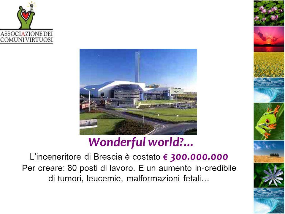 Wonderful world ... Linceneritore di Brescia è costato 300.000.000 Per creare: 80 posti di lavoro.