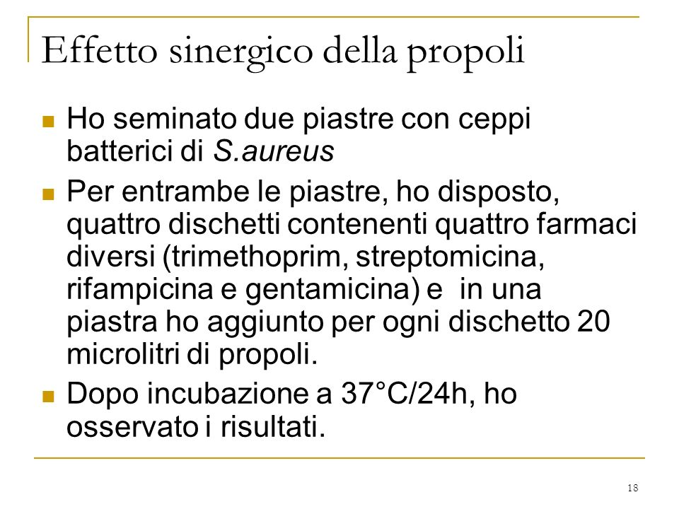 18 Effetto sinergico della propoli Ho seminato due piastre con ceppi batterici di S.aureus Per entrambe le piastre, ho disposto, quattro dischetti con