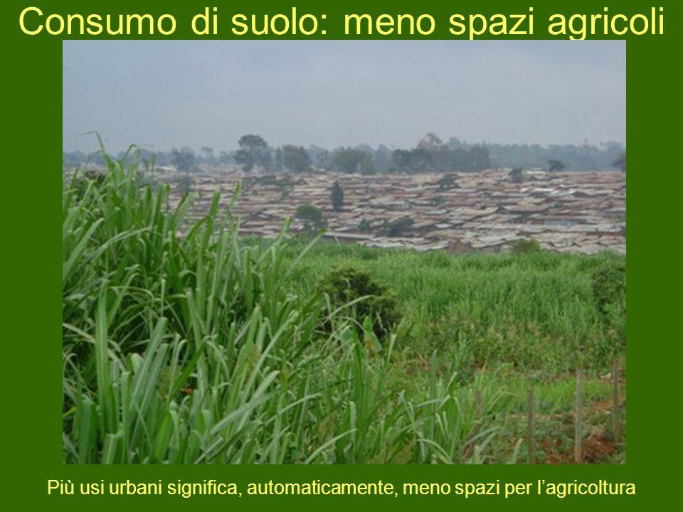 Consumo di suolo: meno spazi agricoli Più usi urbani significa, automaticamente, meno spazi per lagricoltura